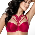Push-up model 114729 Gorsenia Lingerie